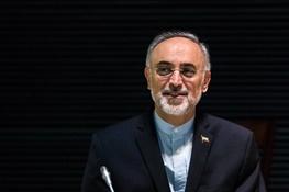 علیاکبر صالحی,توافق هسته ای ایران و پنج بعلاوه یک برجام ,علی لاریجانی
