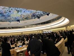 شورای حقوق بشر سازمان ملل,یمن,عربستان
