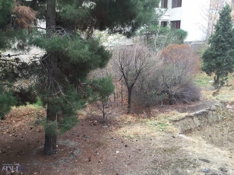 شهرداری یک پارک در شمال غرب تهران را فروخت تا برج ساخته شود/ شهرداری:خلافی اتفاق نیفتاده