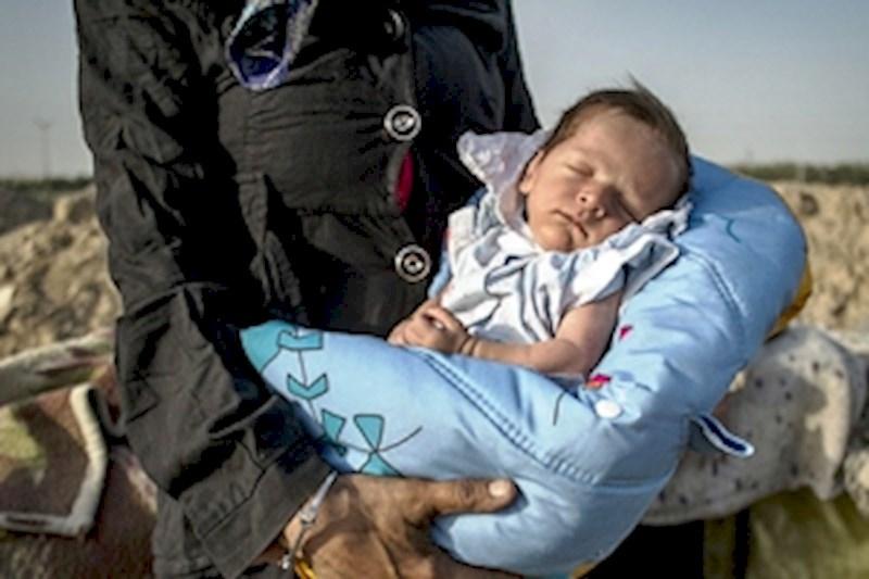 هر ساعت دو نوزاد معتاد در تهران متولد میشود