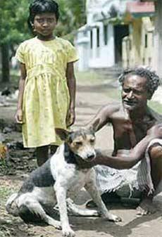 خرافه پرستی عجیب در هند؛ازدواج اجباری دختر9 ساله با یک سگ/عکس