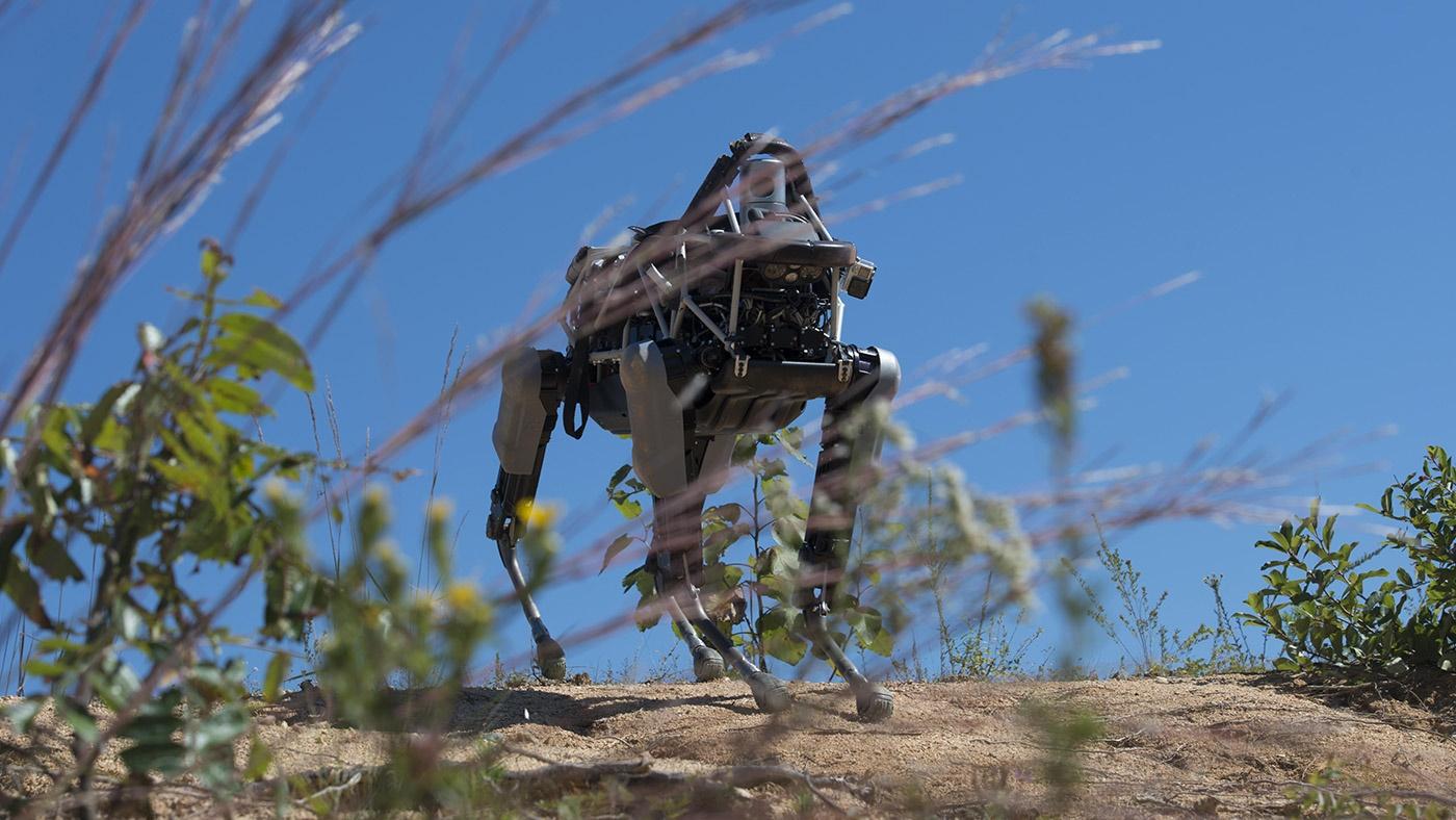 آزمایش سگ روباتیکی گوگل در شرایط شبیه سازی شده جنگی