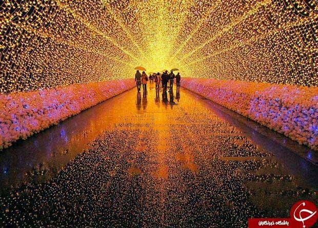 فستیوالهای پرهیجان را ببینید