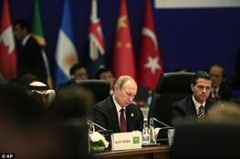 روسیه,ولادیمیر پوتین,گروه20