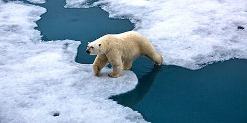 گرمایش زمین سرعت زمین را کم کرد!/افزایش طول مدت روز  حدود یک هزارم ثانیه