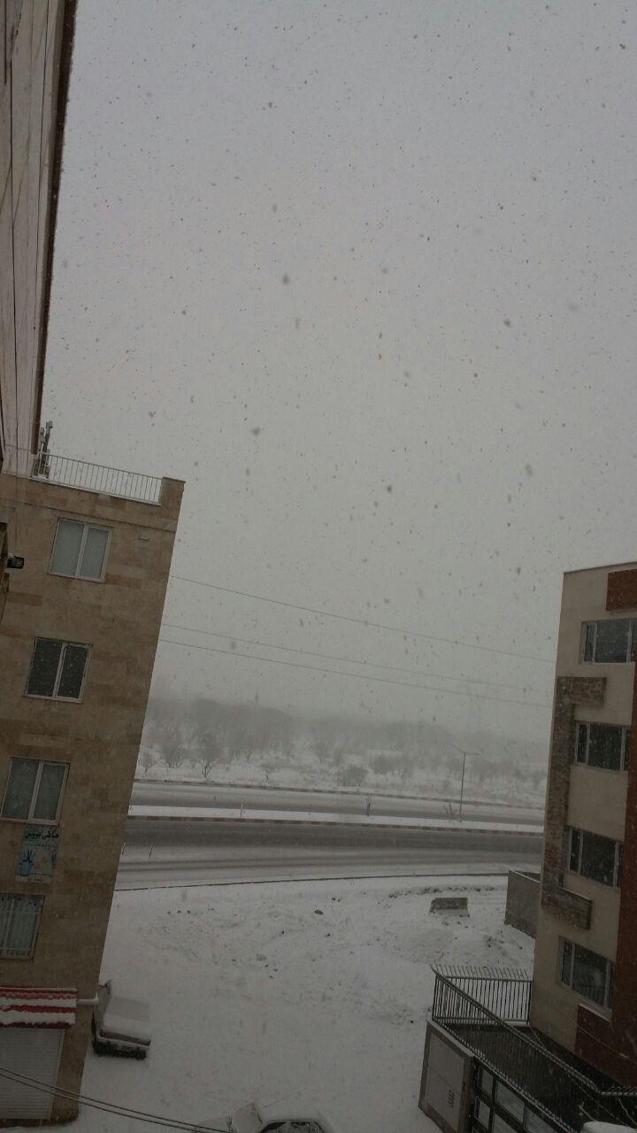 بارش سنگین برف در قزوین