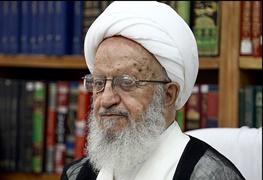 انتخابات مجلس دهم,آیت الله ناصر مکارم شیرازی