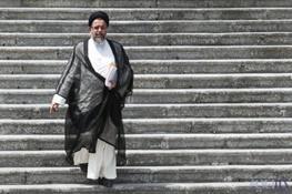 سیدمحمود علوی,مجلس خبرگان