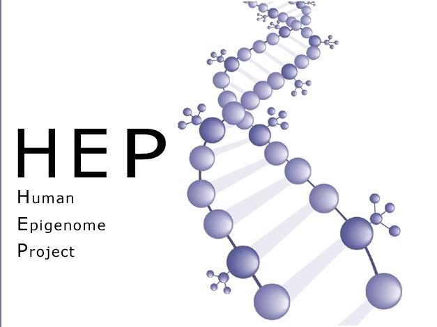 رونمایی از دومین نقشه کدهای ژنتیک انسان: اپیژنتیک