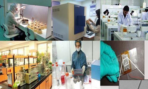معاون پژوهشی و فناوری وزارت علوم:۱۲۰۰شرکت دانش بنیان مجوز گرفتند