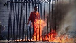 داعش,اردن