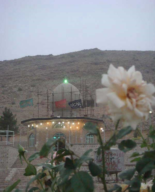 از شیراز تا اینجا راهی نیست!