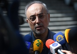 مذاکرات هسته ایران با 5 بعلاوه 1,علیاکبر صالحی