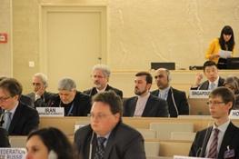 شورای حقوق بشر سازمان ملل,ستاد حقوق بشر,حقوق بشر