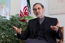 علی اکبر ولایتی,مذاکرات هسته ایران با 5 بعلاوه 1,یمن
