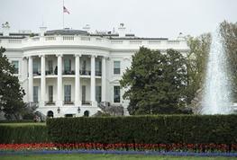 هکرهای دولتی روسیه چگونه وارد فضای مجازی کاخ سفید شدند؟