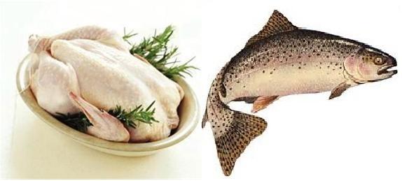 ردپای سرطان در ماهی قزلآلا و فلزات سنگین در مرغ
