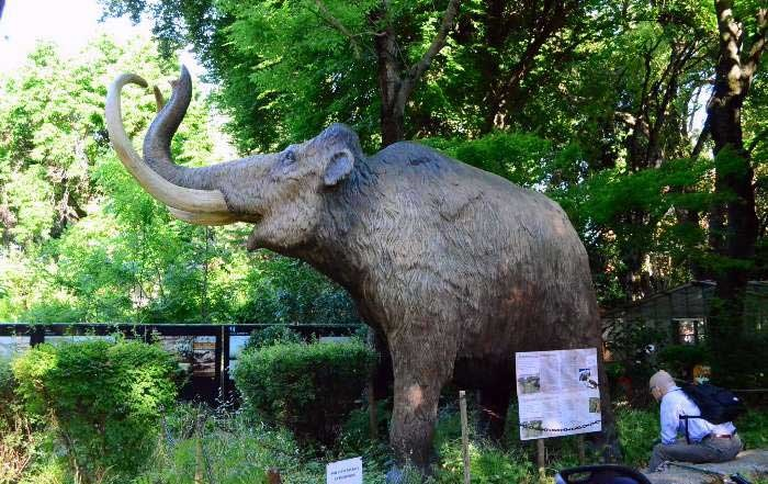 دایناسورهای زنده در رم را ببینید