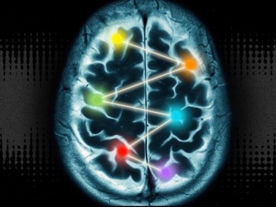 رد یک نظریه عامهپسند دیگر: «استفاده ۱۰ درصدی از مغز»