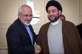 محمدجواد ظریف,سیدعمار حکیم