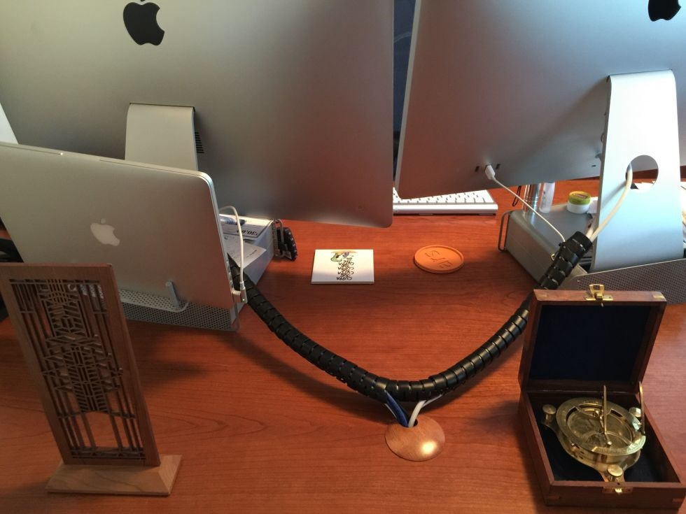بااینهمه مار پشت میز کامپیوترم چه کنم؟