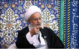 آیت الله ناصر مکارم شیرازی,عربستان