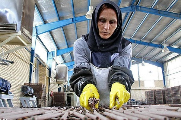 زنان هنوز در تنگنای اشتغال هستند/مرکز آمار: بیکاری 50 هزار نفر از زنان بهدلیل اخراج، حقوق اندک و ...