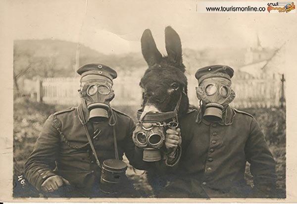 قدم زدن در تاریخ با عکس های کمیاب