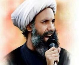 شیخ نمر باقر النمر,ستاد حقوق بشر,حقوق بشر