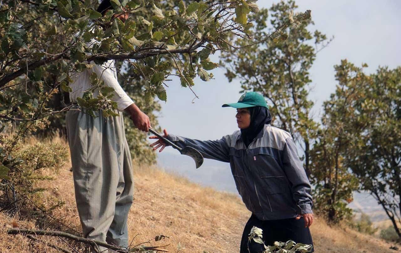 تصاویر | نخستین بانوی جنگلبان کردستان