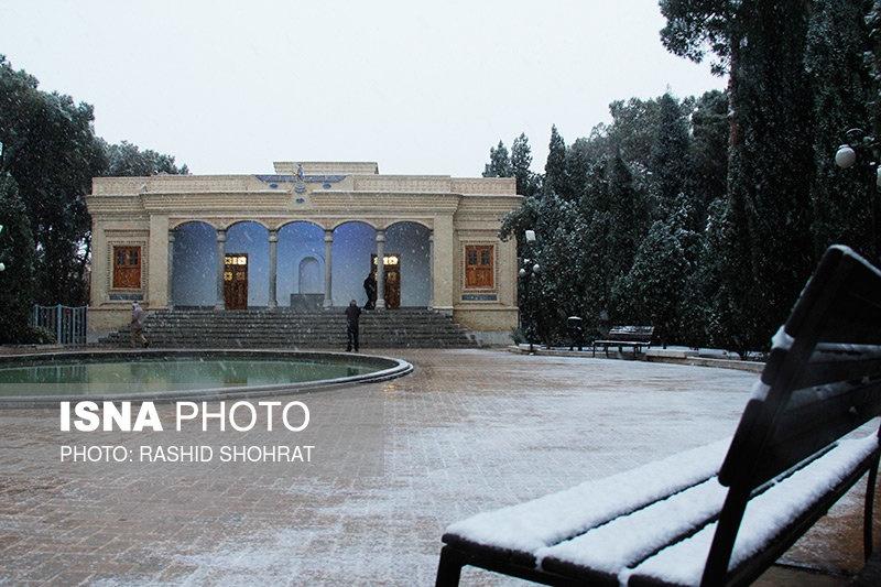 تصاویر | برف کویر را هم سفید کرد | بارش برف در یزد