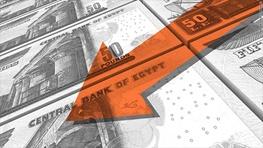 چرا دولت مصر نرخ ارز خود را شناور کرد؟