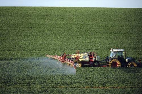 عنصر حیاتی زمین که در حال از بین رفتن است/تهدید برای تولید غذای بشر
