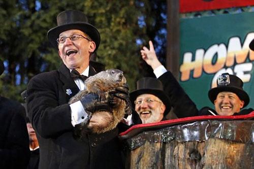 وقتی آمریکاییها برای پیشبینی هوا دست به دامن موش خرما میشوند!/برگزاری مراسم ۱۲۹ ساله
