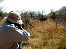 سال حبس برای شکارچیان متخلف/ جرم آنها چه بود؟