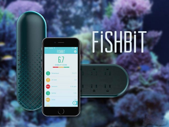 فیش بیت؛ ابزار هوشمند برای مانیتور کردن آکواریوم از هزاران کیلومتر دورتر