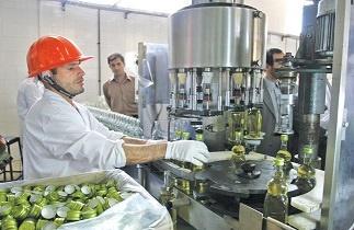 صنعت بستهبندی در زنجان مغفول مانده است