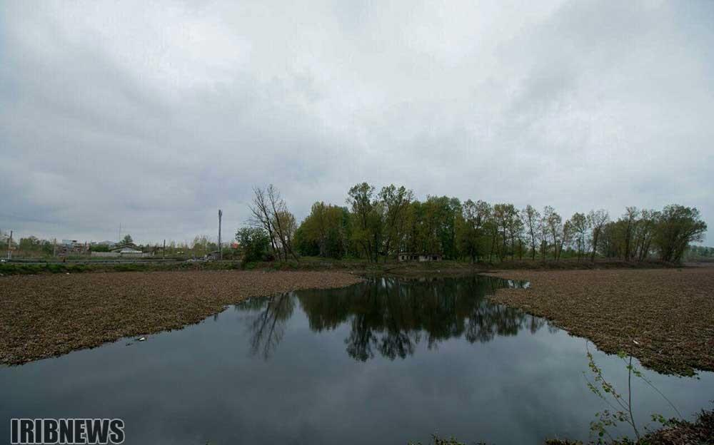 گزارشی از وضع تالاب های کشور بعد از بارش ها/ از حال خوش ارومیه تا آبگیری هامون