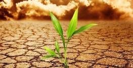 عناصر اساسی توافقنامه تغییرات اقلیمی پاریس چیست ؟