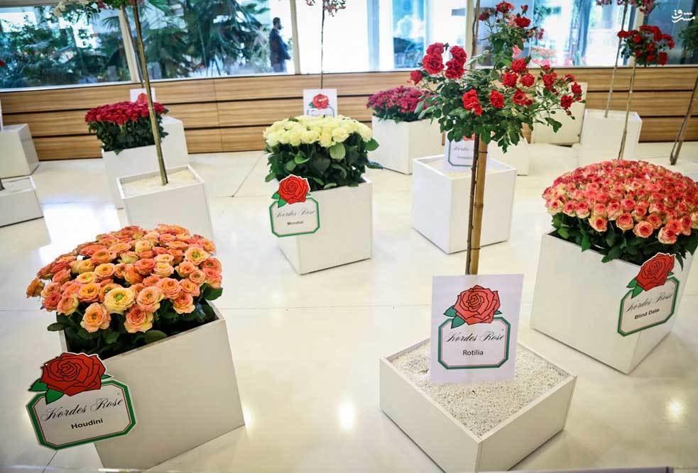آغاز به کار نمایشگاه گل و گیاه تهران