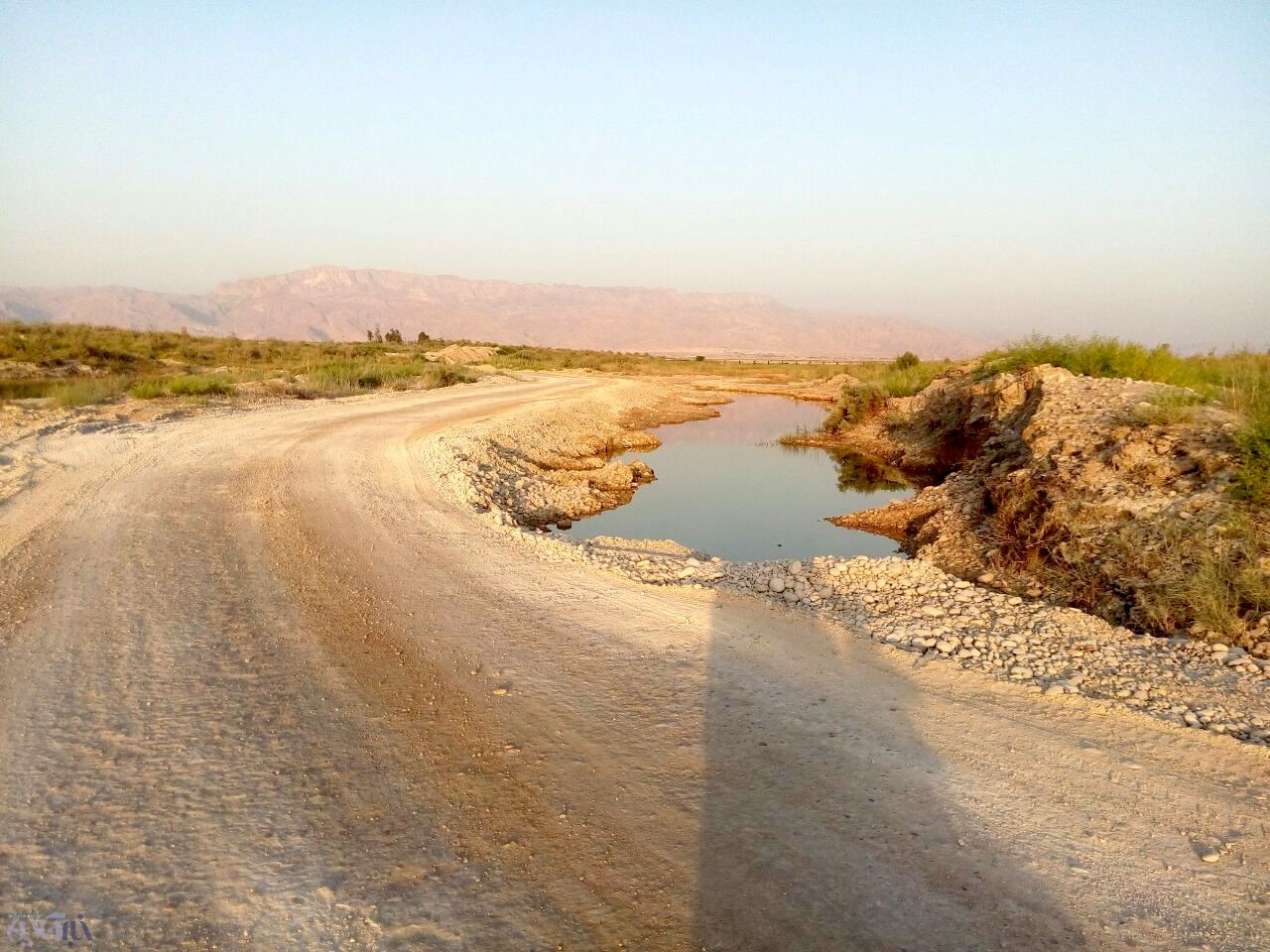 دالکی، تکرار فاجعه دریاچه ارومیه، اینبار با سنگشکن/ بلدوزرها به جان رودخانه پر آب بوشهر افتادند