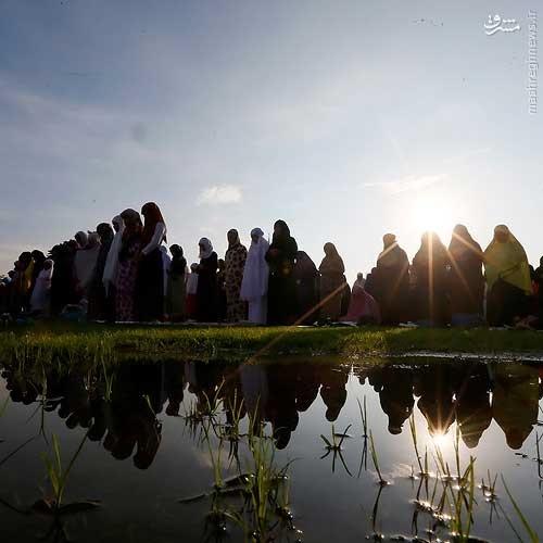 تصاویر   نماز عید سعید فطر در مسجد الاقصی ، ایتالیا و اتیوپی