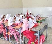 مدارس ابتدایی استان نیمکت خالی ندارند