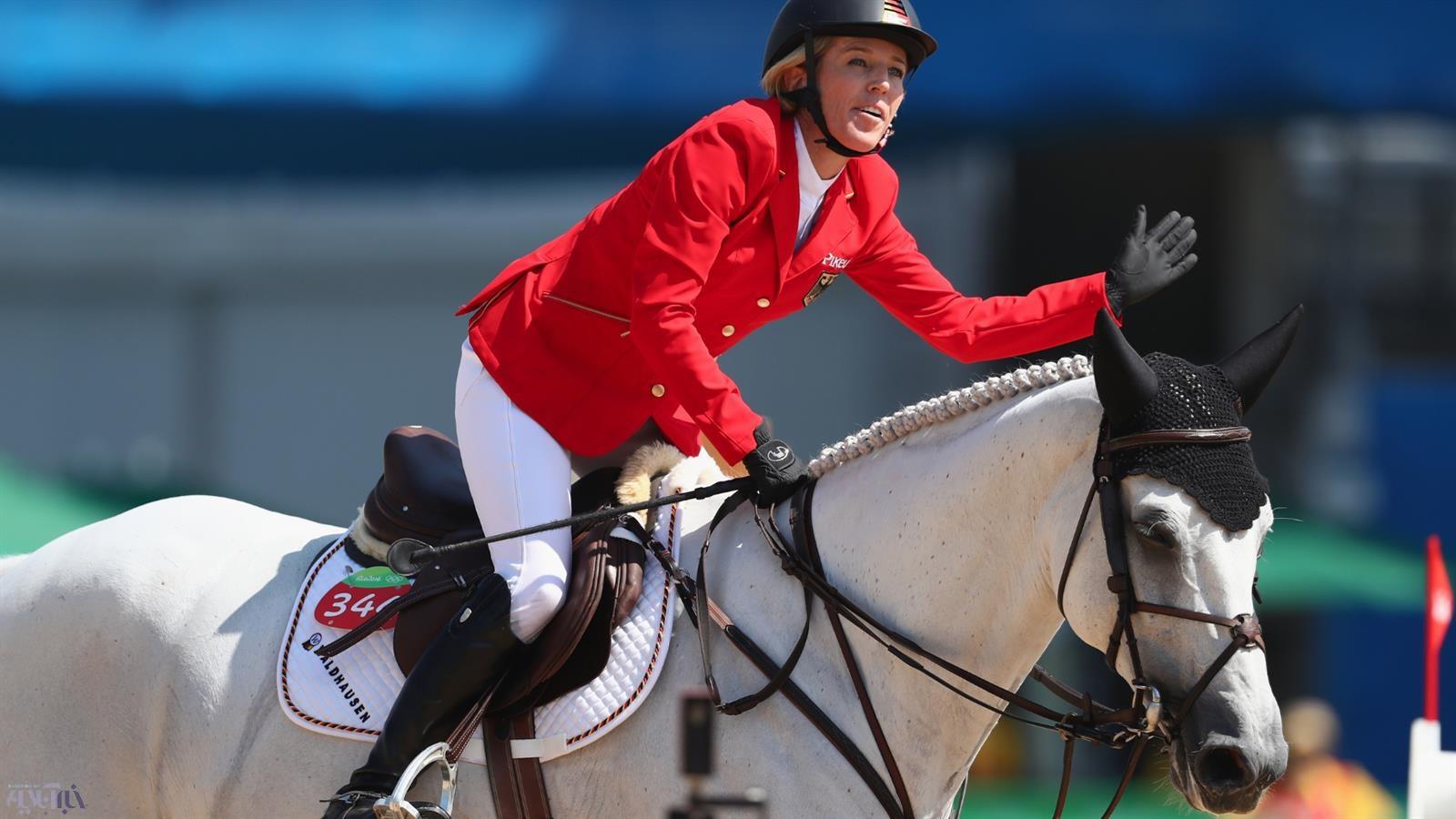 تصاویر   اسبهایی که برای کسب مدال المپیک رقابت میکنند
