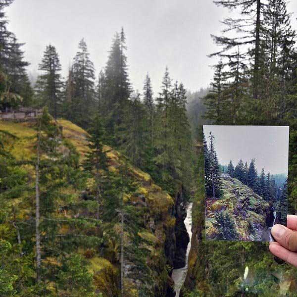 تصاویر | به دنبال آقا جون در پارکهای ملی آمریکا!