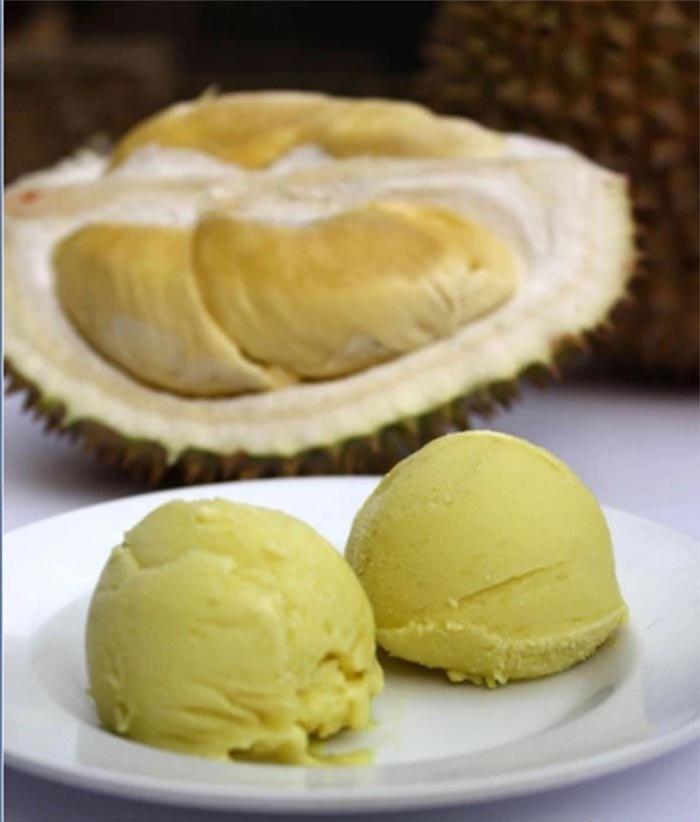 تصاویر | سفر با طعم بستنی!