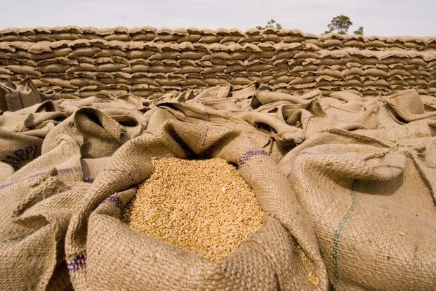 بیشترین واردات گندم در چه سالی اتفاق افتاد؟