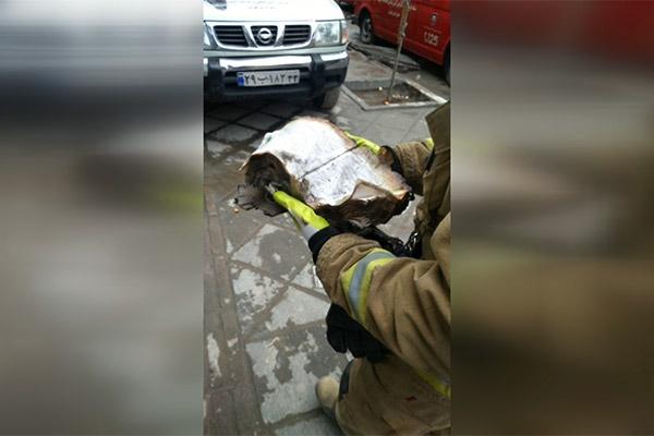 فیلم | قرآنی که آتشنشانان دقایقی پیش از زیر آوار پلاسکو بیرون آوردند