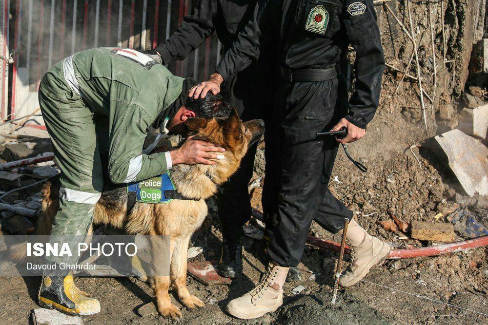 عکس    تشکر مامور آتشنشانی از سگ زندهیاب به خاطر پیداکردن پیکر دوستانش