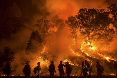 فیلم | تصاویر هوایی از بلایی که آتشسوزی بر سر کالیفرنیا آورد